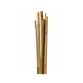 Tutor de Caña de Bambú