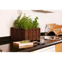 Kit Planter 30x40x20 cms