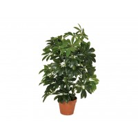 Planta Artificial de Cheflera