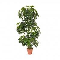 Planta Artificial de Cheflera Grande