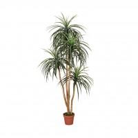 Planta Artificial de Nolina