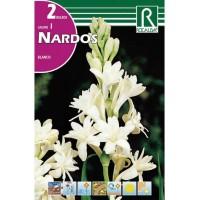 Bulbos de Nardo