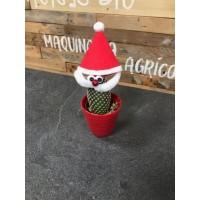 Cactus Papa Noel