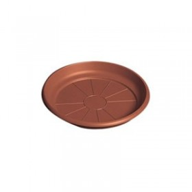 Plato de Plástico de 14 cms
