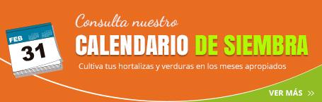 Calendario de siembra para hortalizas y verduras